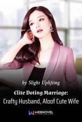 Elite Doting Marriage: Crafty Husband, Aloof Cute Wife